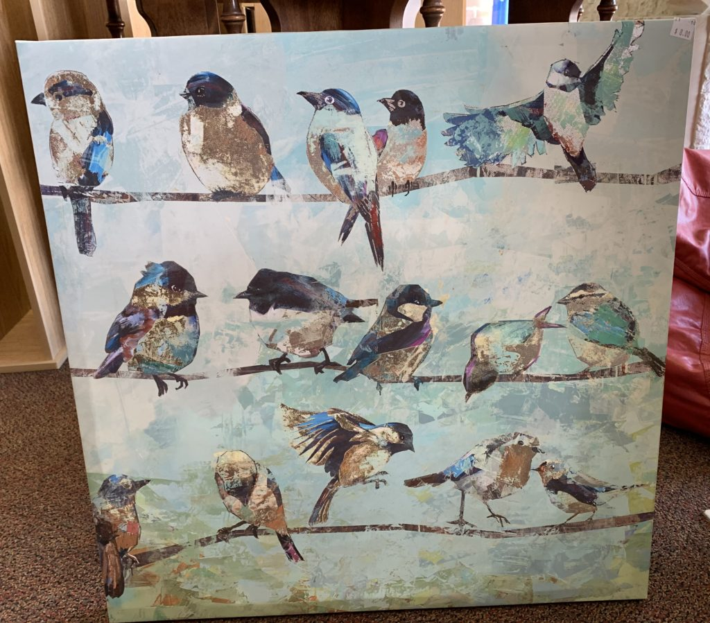 Pictures / Decor / Birds /